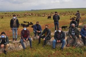 Reyhanlı'da, Sürü Yöneticiliği Kursu Açıldı